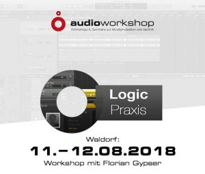 """Logic Praxis""-Seminar im August in Waldorf"